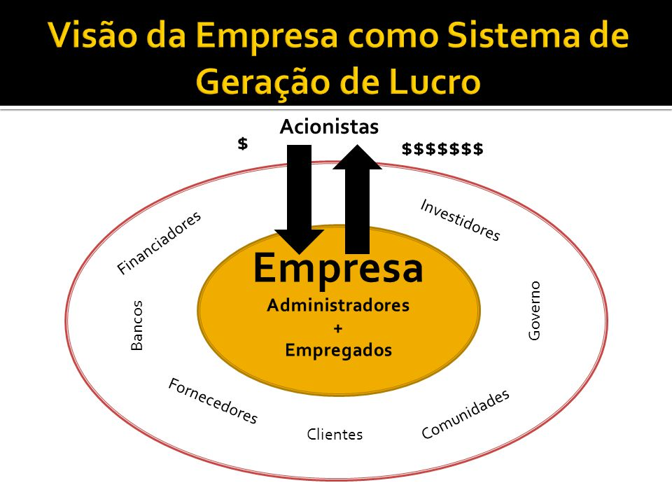 Visão da Empresa como Sistema de Geração de Lucro