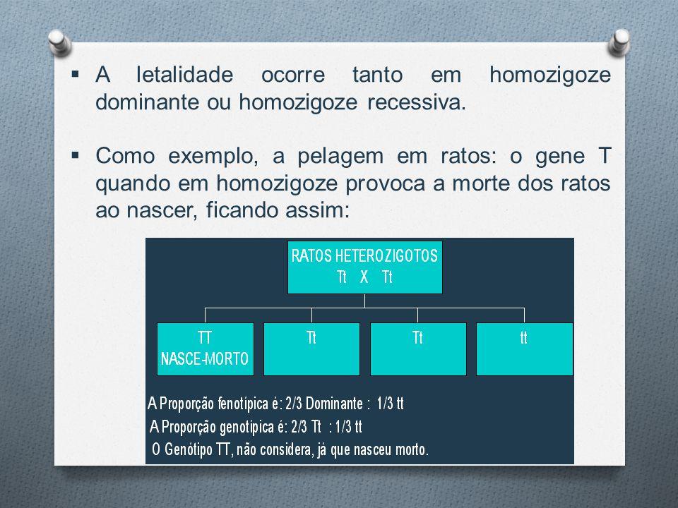 A letalidade ocorre tanto em homozigoze dominante ou homozigoze recessiva.