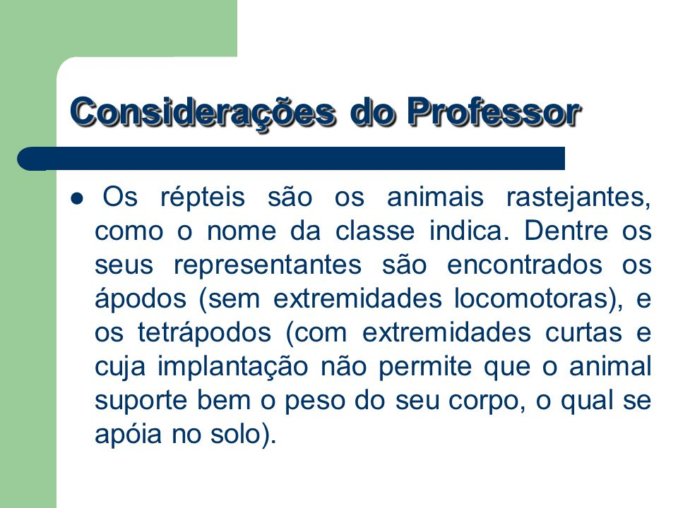 Considerações do Professor