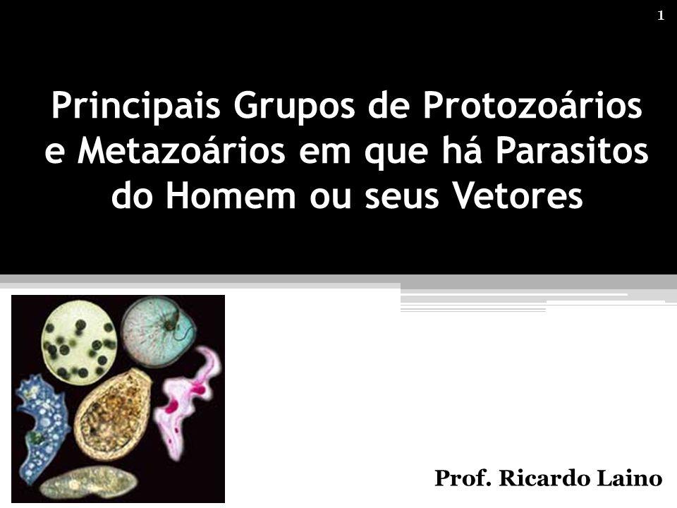 Principais Grupos de Protozoários e Metazoários em que há Parasitos do Homem ou seus Vetores