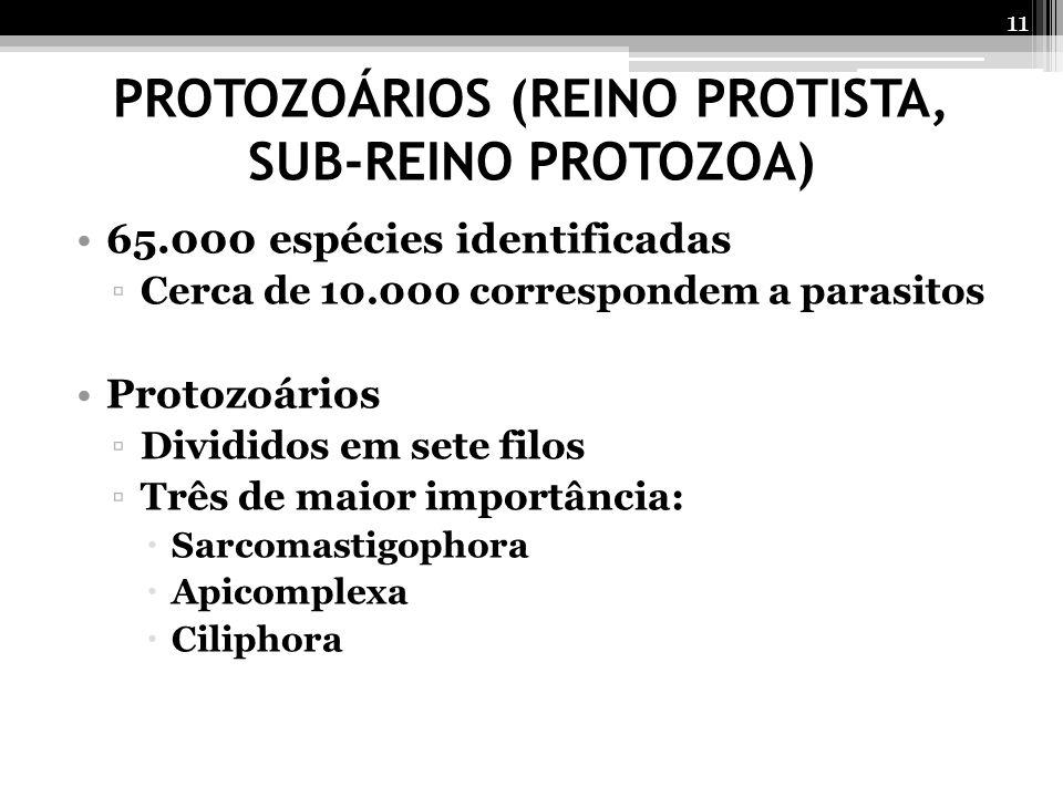 PROTOZOÁRIOS (REINO PROTISTA, SUB-REINO PROTOZOA)