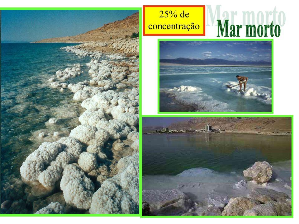 25% de concentração Mar morto