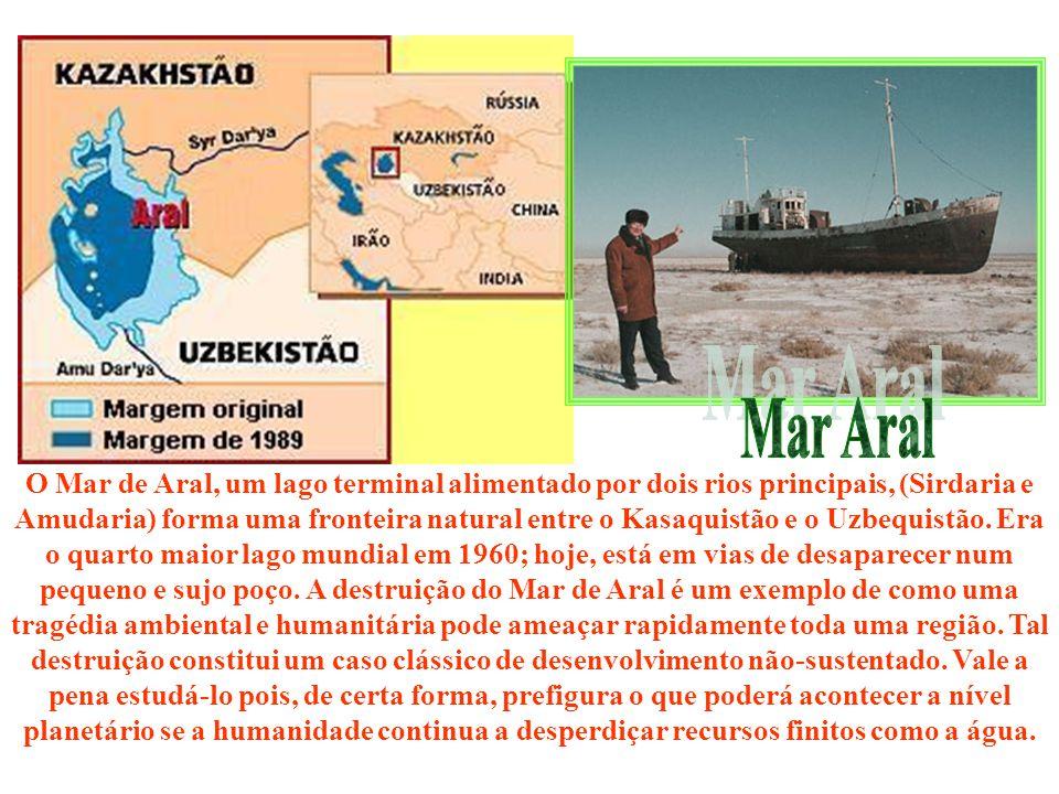 O Mar de Aral, um lago terminal alimentado por dois rios principais, (Sirdaria e Amudaria) forma uma fronteira natural entre o Kasaquistão e o Uzbequistão. Era o quarto maior lago mundial em 1960; hoje, está em vias de desaparecer num pequeno e sujo poço. A destruição do Mar de Aral é um exemplo de como uma tragédia ambiental e humanitária pode ameaçar rapidamente toda uma região. Tal destruição constitui um caso clássico de desenvolvimento não-sustentado. Vale a pena estudá-lo pois, de certa forma, prefigura o que poderá acontecer a nível planetário se a humanidade continua a desperdiçar recursos finitos como a água.