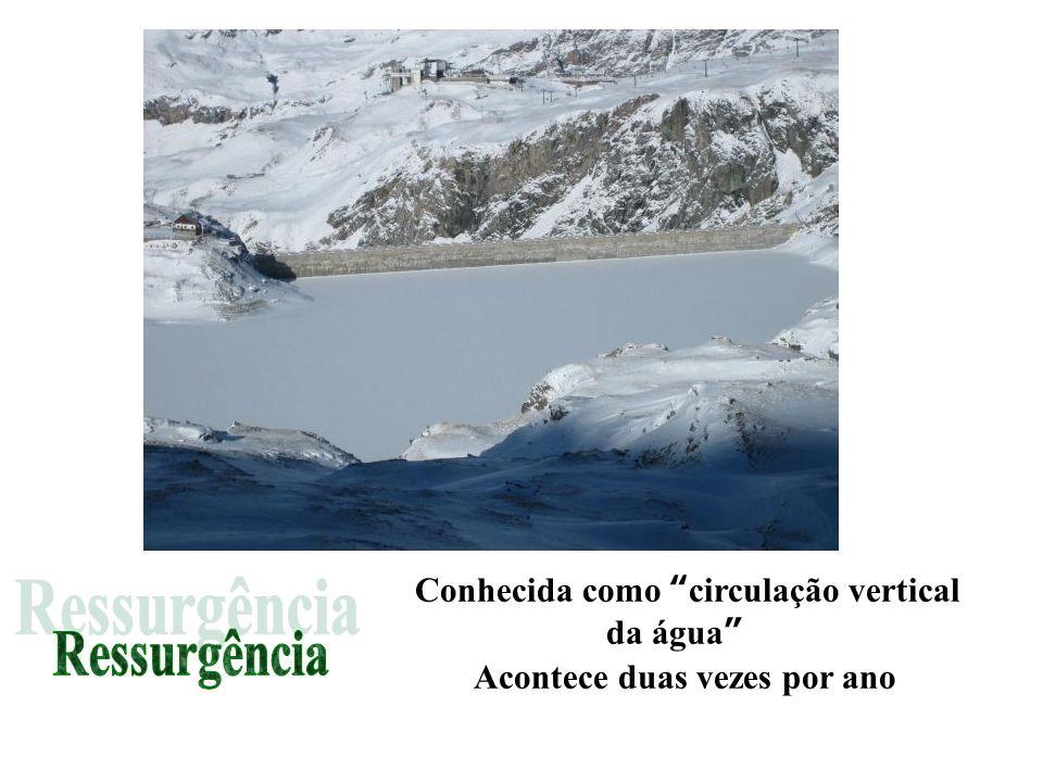 Ressurgência Conhecida como circulação vertical da água