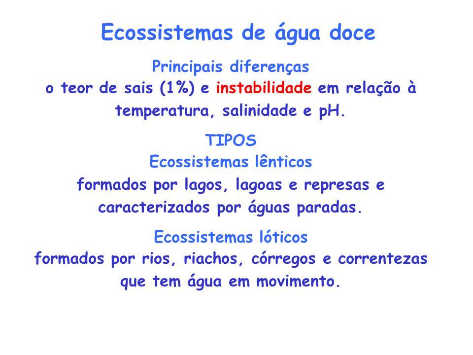 Ecossistemas de água doce Principais diferenças Ecossistemas lênticos
