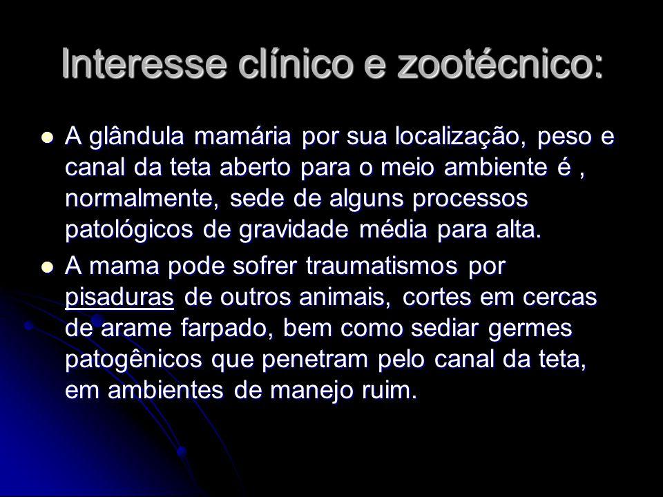 Interesse clínico e zootécnico: