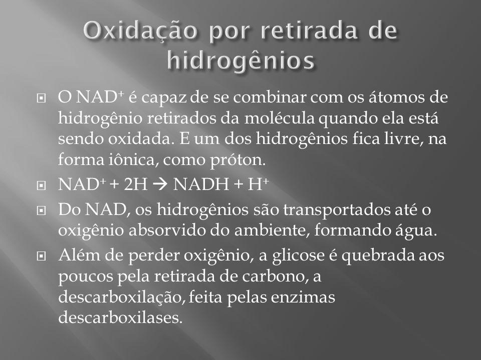 Oxidação por retirada de hidrogênios