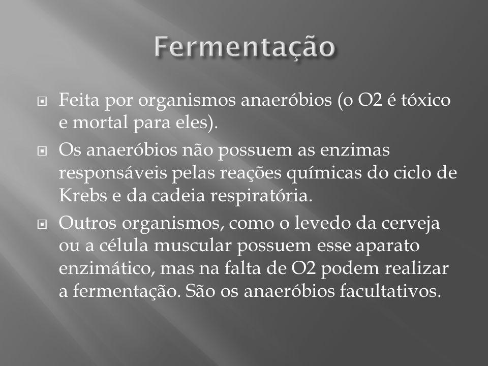 Fermentação Feita por organismos anaeróbios (o O2 é tóxico e mortal para eles).