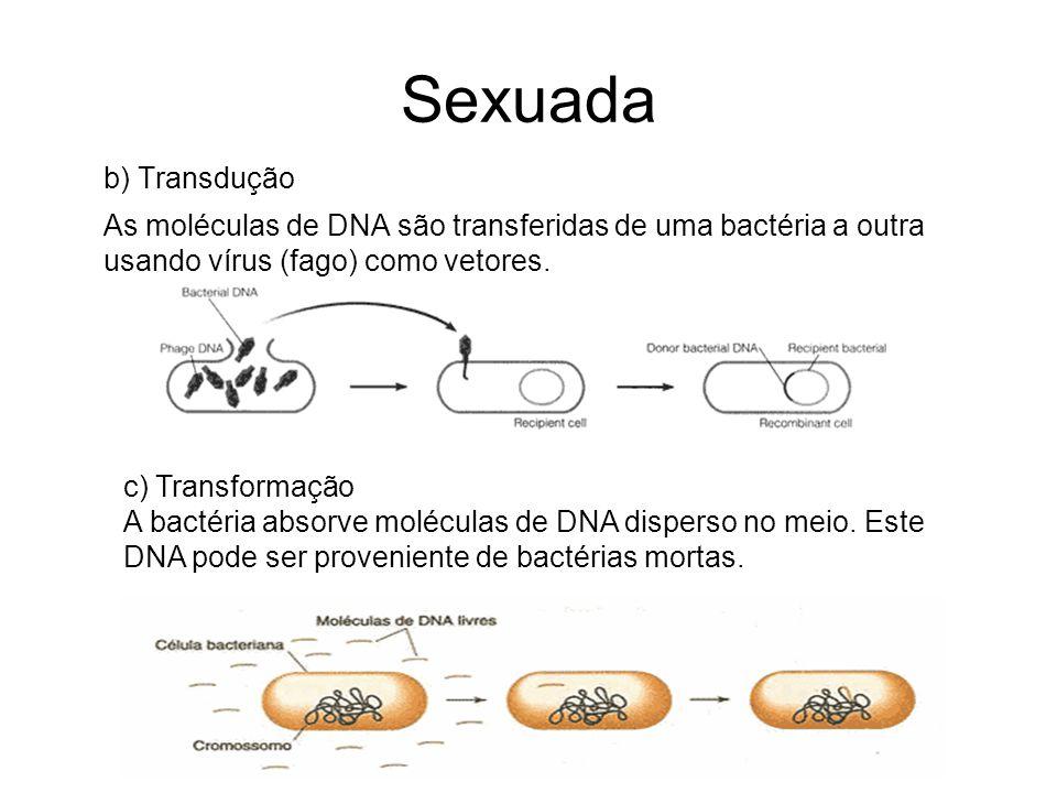 Sexuada b) Transdução. As moléculas de DNA são transferidas de uma bactéria a outra usando vírus (fago) como vetores.
