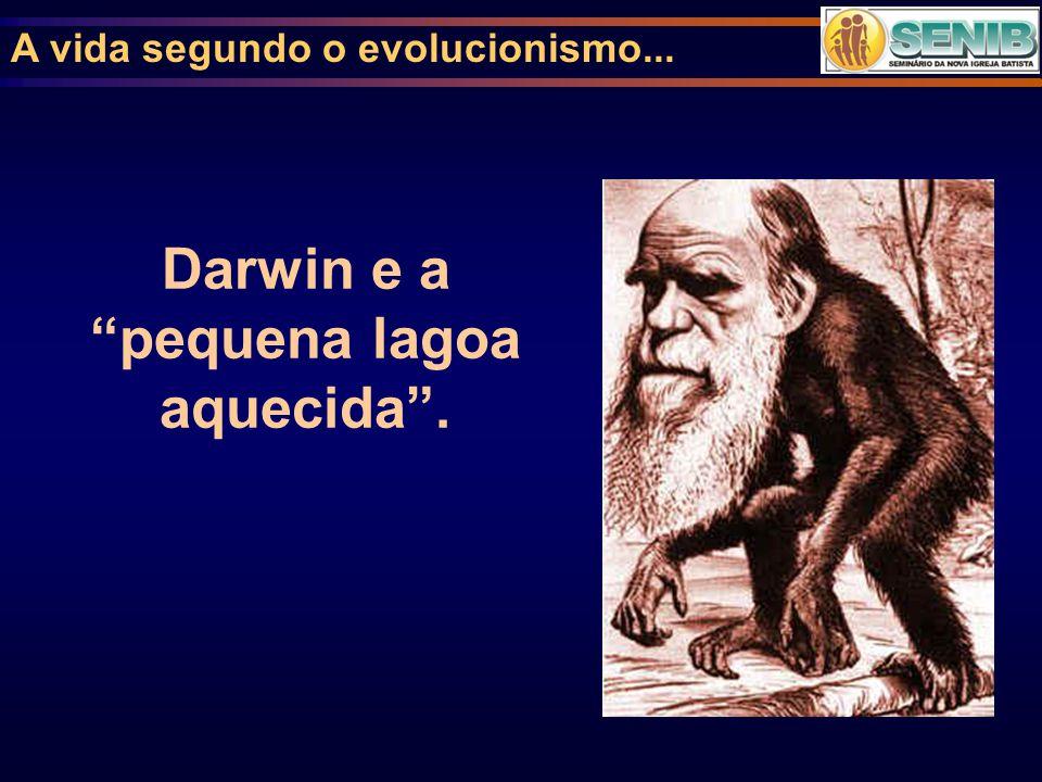 Darwin e a pequena lagoa aquecida .