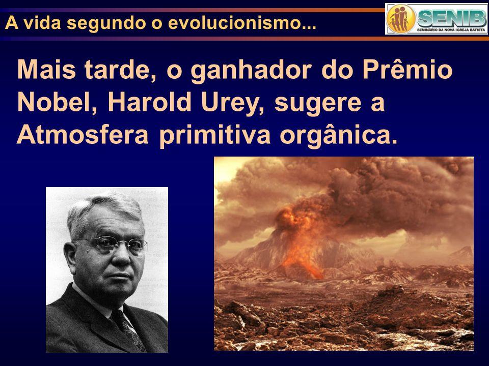 A vida segundo o evolucionismo...