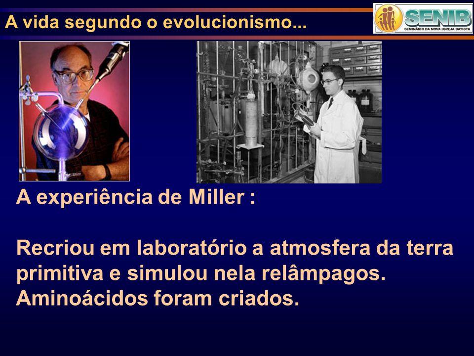 A experiência de Miller :