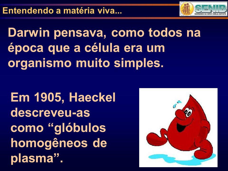 Em 1905, Haeckel descreveu-as como glóbulos homogêneos de plasma .