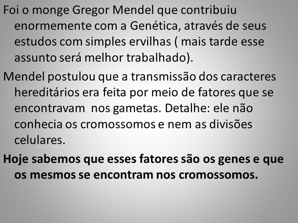 Foi o monge Gregor Mendel que contribuiu enormemente com a Genética, através de seus estudos com simples ervilhas ( mais tarde esse assunto será melhor trabalhado).