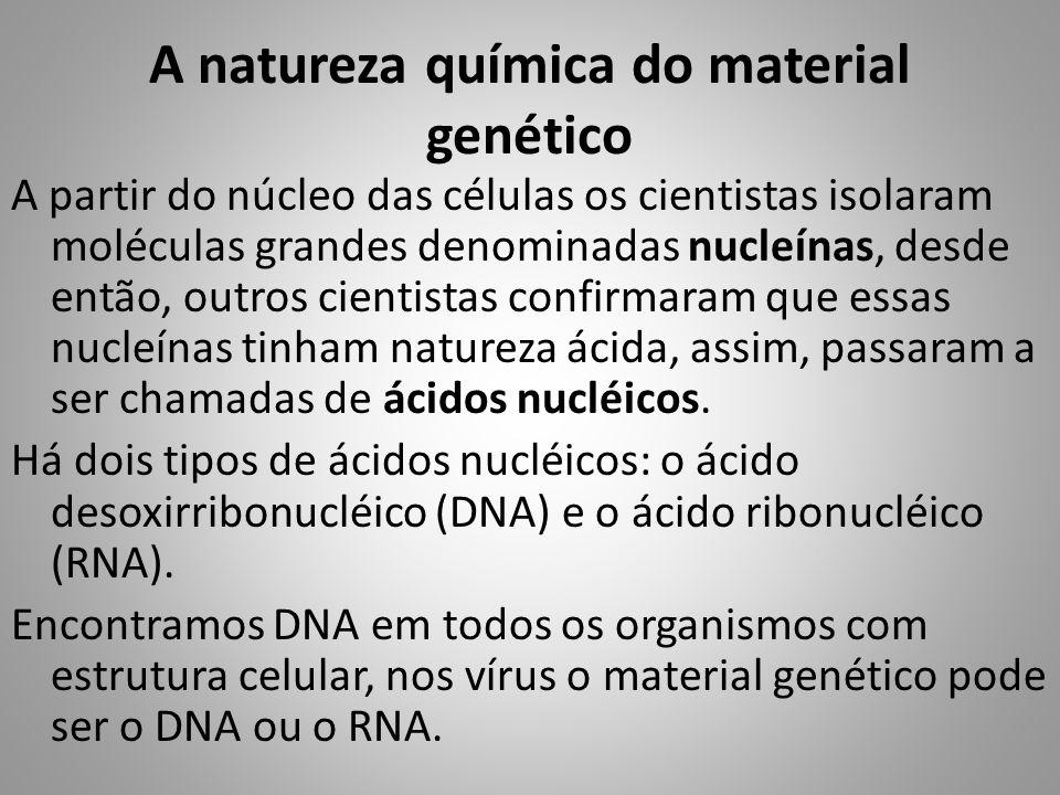 A natureza química do material genético