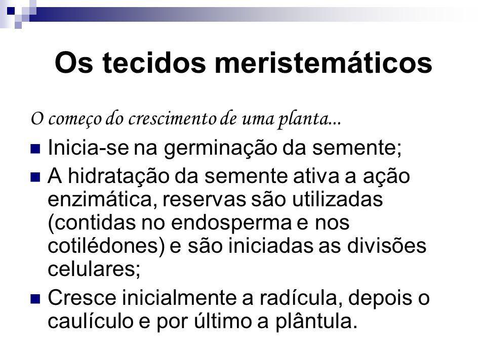 Os tecidos meristemáticos