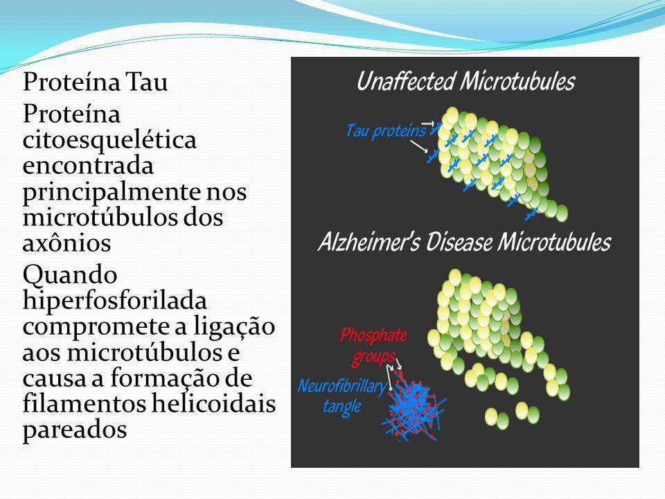 Proteína Tau Proteína citoesquelética encontrada principalmente nos microtúbulos dos axônios.