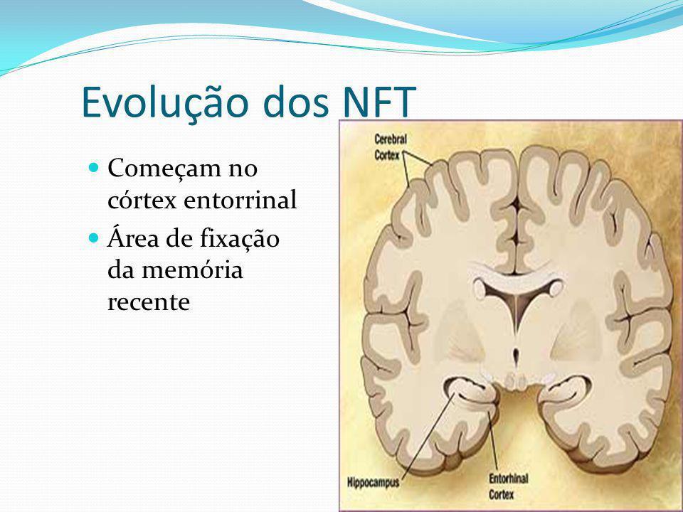Evolução dos NFT Começam no córtex entorrinal