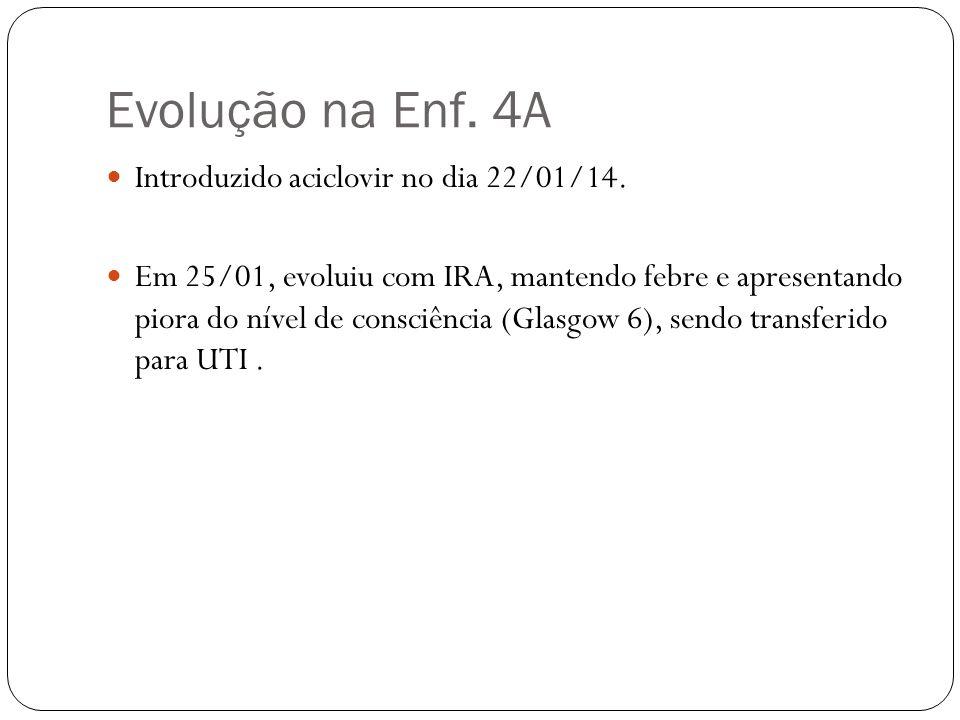 Evolução na Enf. 4A Introduzido aciclovir no dia 22/01/14.