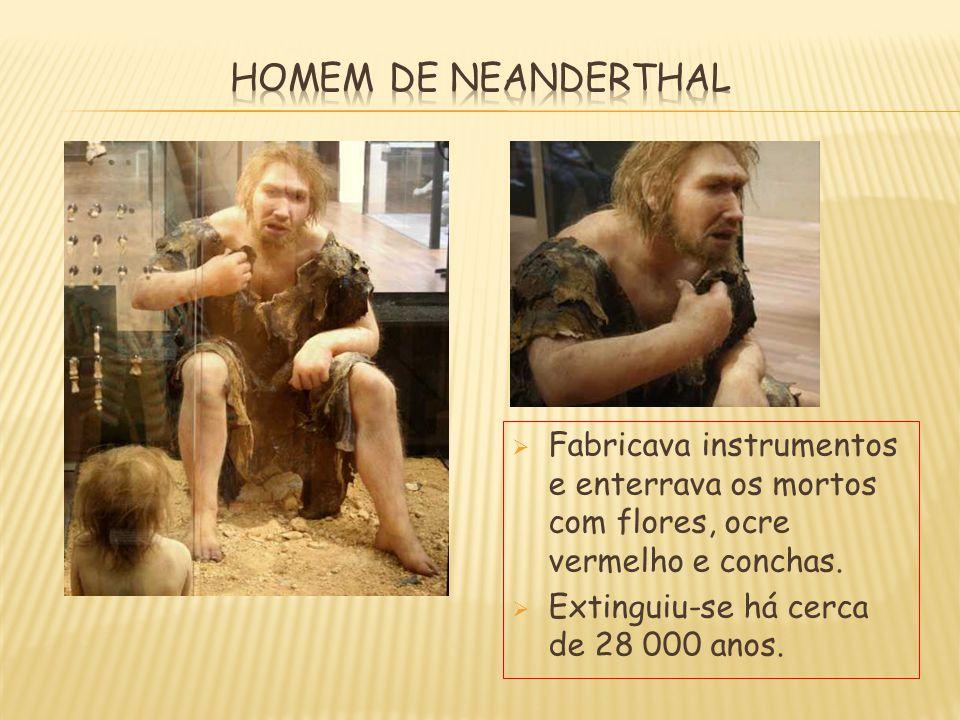 HOMEM DE NEANDERTHAL Fabricava instrumentos e enterrava os mortos com flores, ocre vermelho e conchas.