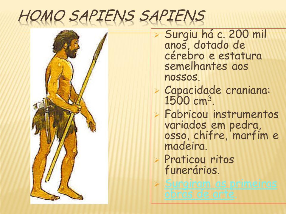 Homo sapiens sapiens Surgiu há c. 200 mil anos, dotado de cérebro e estatura semelhantes aos nossos.
