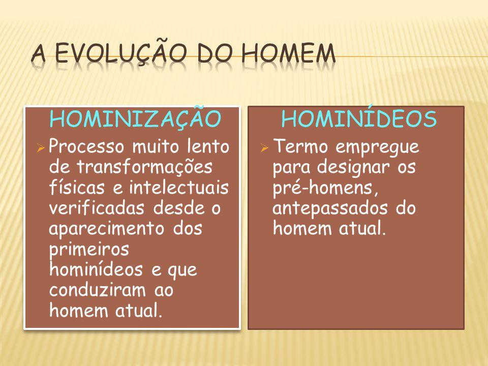 A EVOLUÇÃO DO HOMEM HOMINIZAÇÃO HOMINÍDEOS