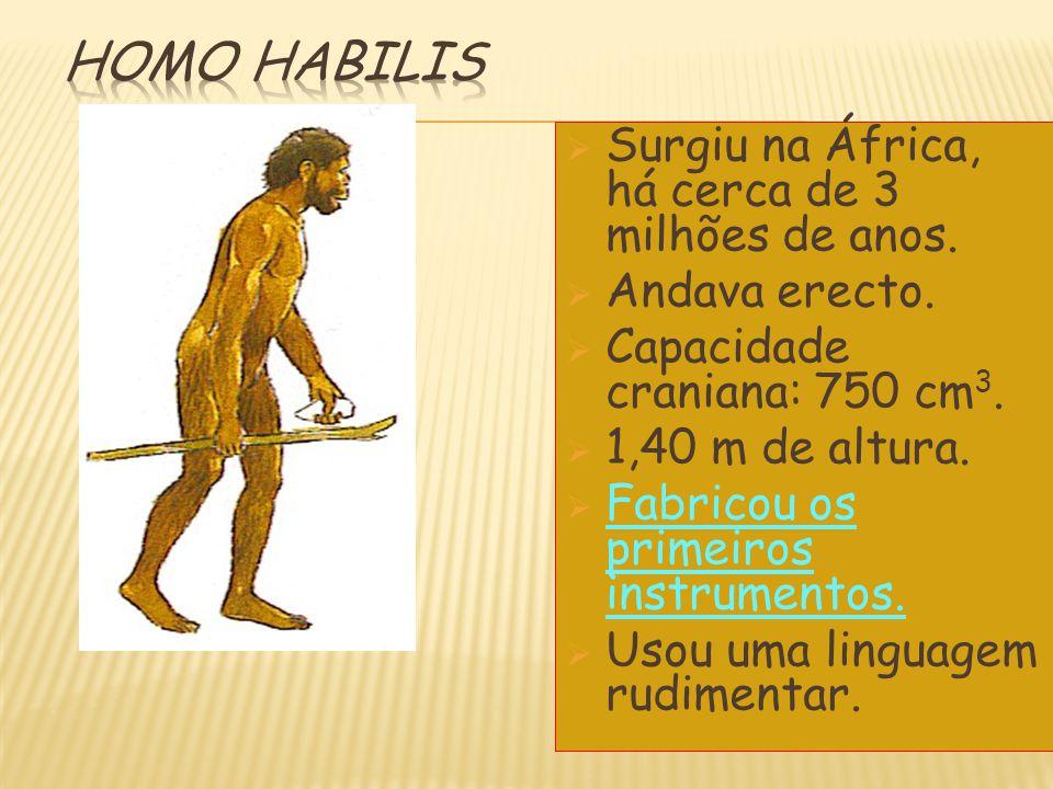 Homo habilis Surgiu na África, há cerca de 3 milhões de anos.