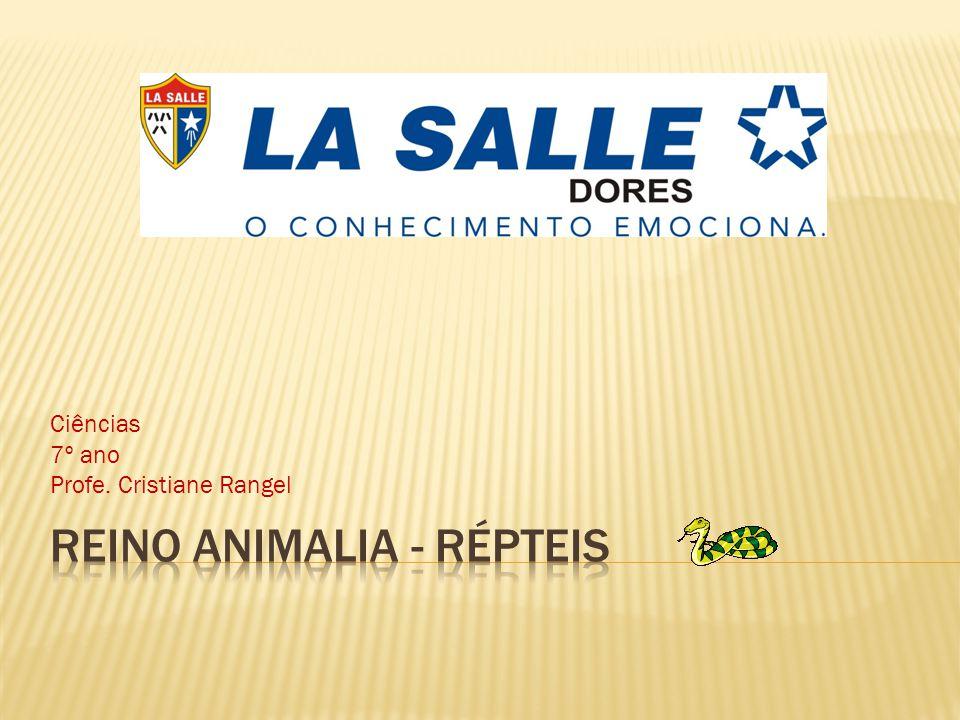 Reino Animalia - Répteis