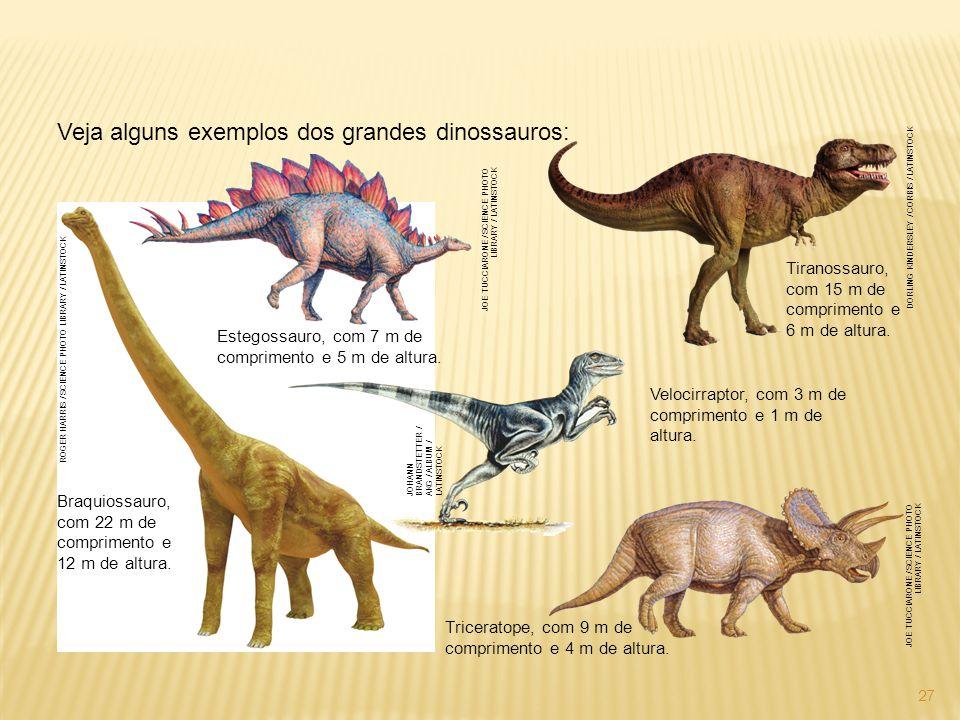 Veja alguns exemplos dos grandes dinossauros: