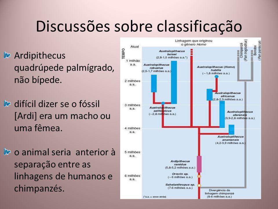 Discussões sobre classificação