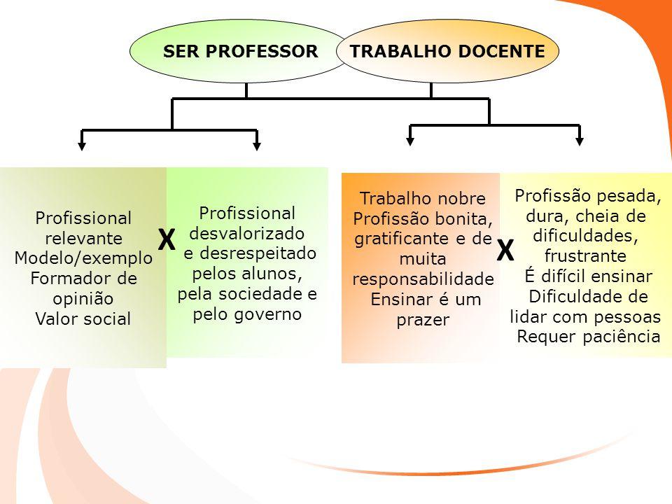 Profissional relevante Modelo/exemplo Formador de opinião Valor social