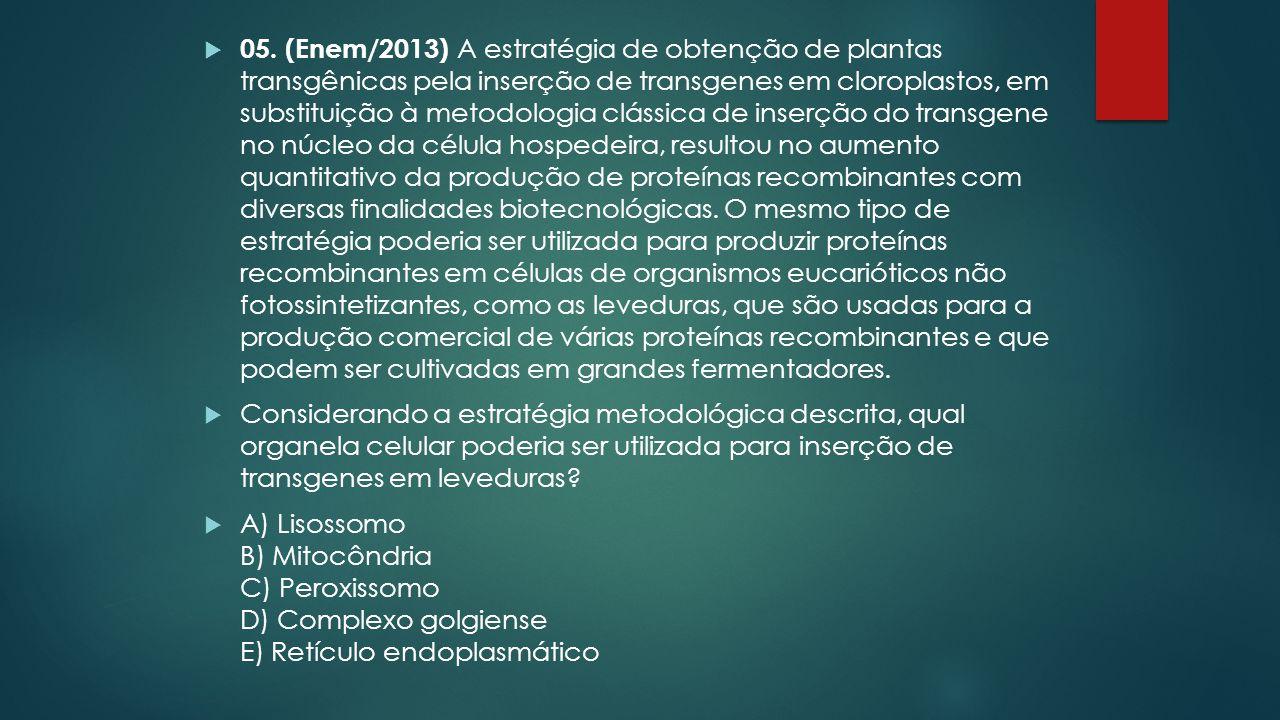 05. (Enem/2013) A estratégia de obtenção de plantas transgênicas pela inserção de transgenes em cloroplastos, em substituição à metodologia clássica de inserção do transgene no núcleo da célula hospedeira, resultou no aumento quantitativo da produção de proteínas recombinantes com diversas finalidades biotecnológicas. O mesmo tipo de estratégia poderia ser utilizada para produzir proteínas recombinantes em células de organismos eucarióticos não fotossintetizantes, como as leveduras, que são usadas para a produção comercial de várias proteínas recombinantes e que podem ser cultivadas em grandes fermentadores.
