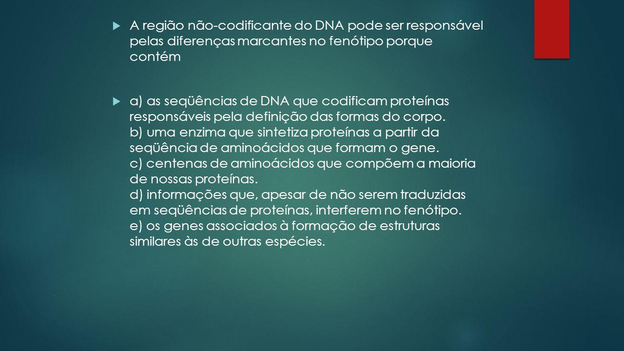 A região não-codificante do DNA pode ser responsável pelas diferenças marcantes no fenótipo porque contém