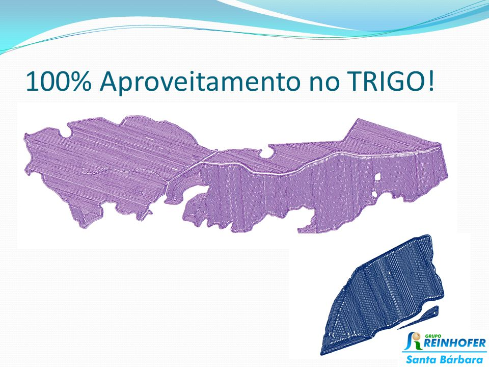 100% Aproveitamento no TRIGO!