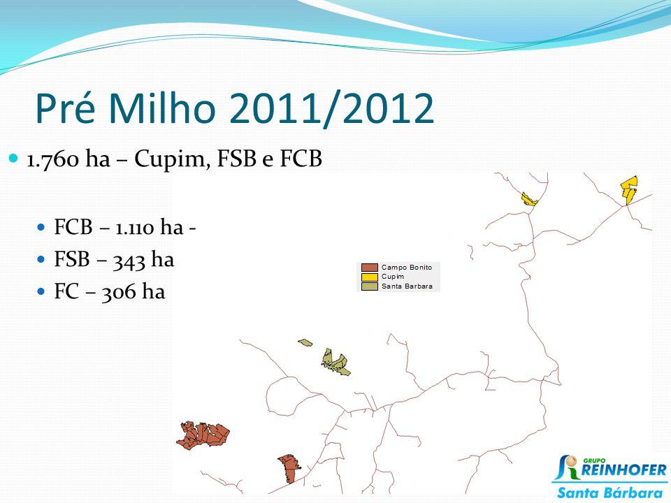 Pré Milho 2011/2012 1.760 ha – Cupim, FSB e FCB FCB – 1.110 ha -