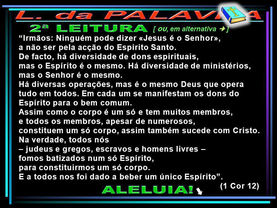 L. da PALAVRA 2ª LEITURA ALELUIA!
