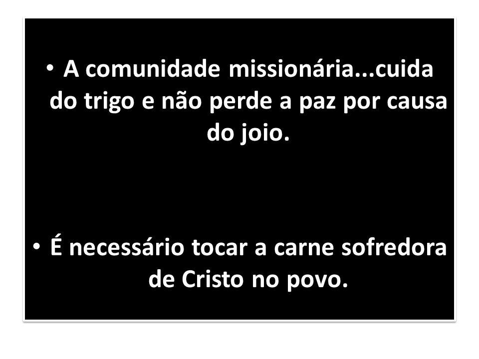 É necessário tocar a carne sofredora de Cristo no povo.