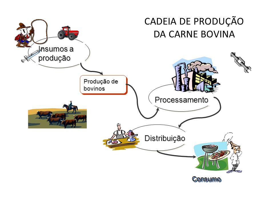 CADEIA DE PRODUÇÃO DA CARNE BOVINA