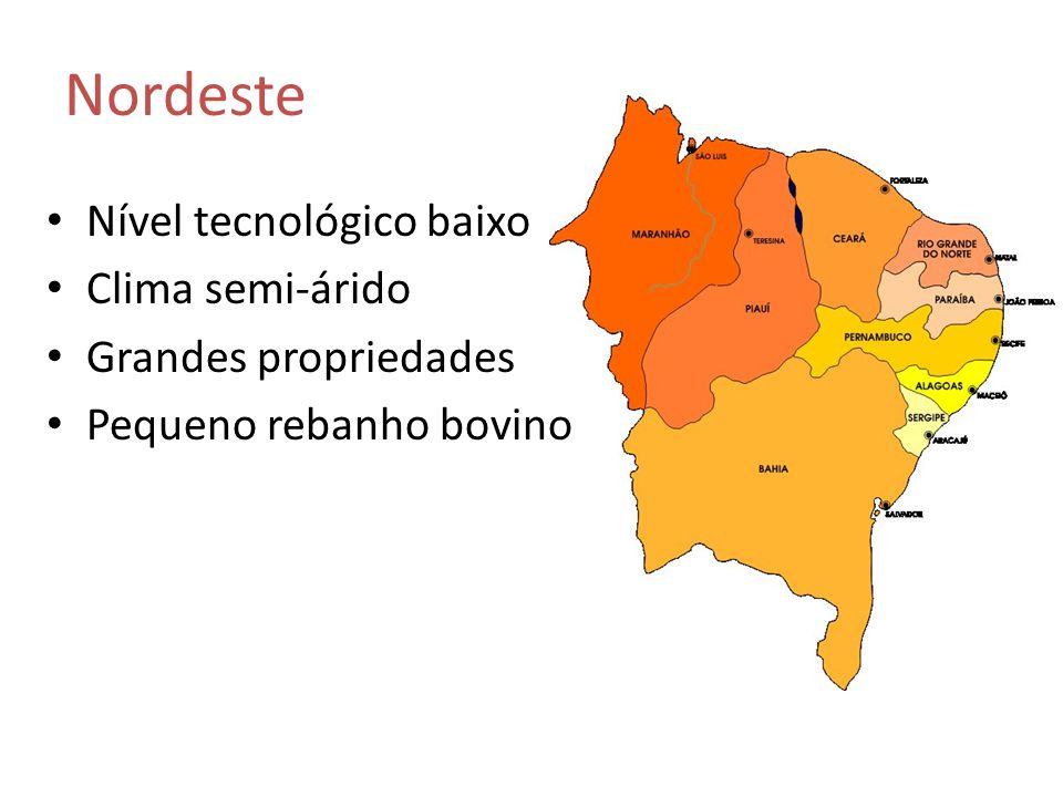 Nordeste Nível tecnológico baixo Clima semi-árido Grandes propriedades