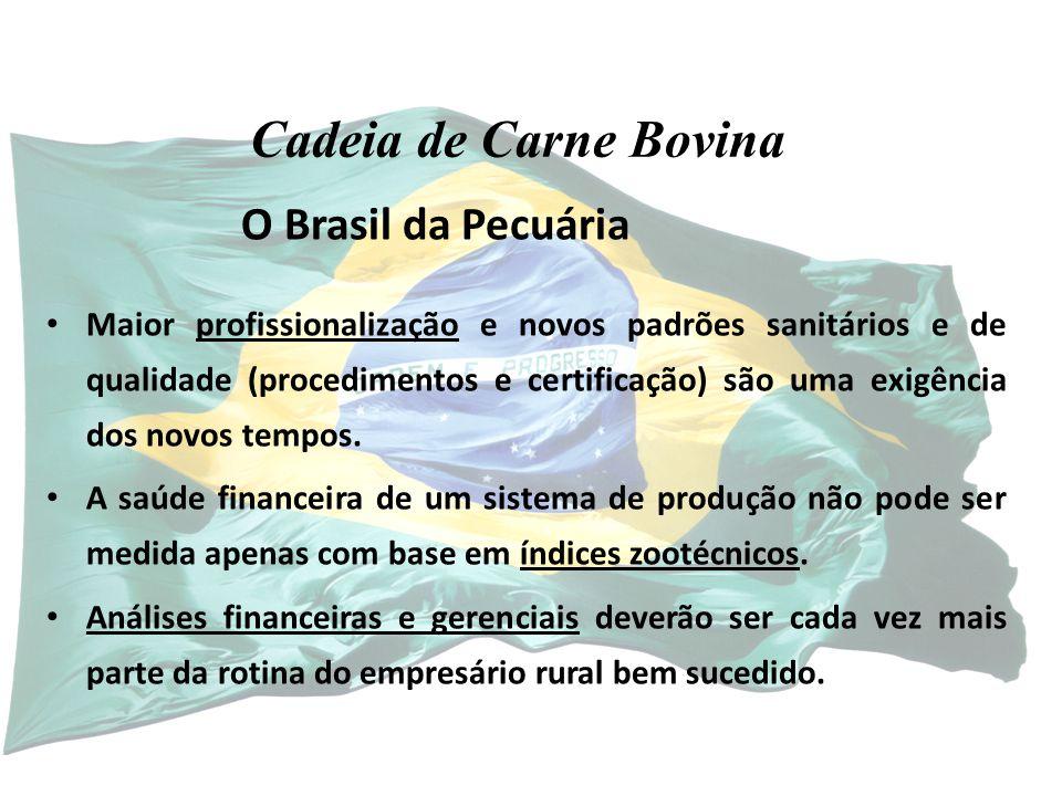 Cadeia de Carne Bovina O Brasil da Pecuária
