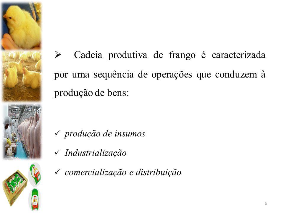 Cadeia produtiva de frango é caracterizada por uma sequência de operações que conduzem à produção de bens:
