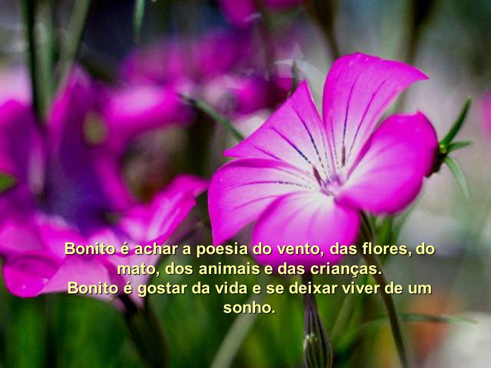 Bonito é gostar da vida e se deixar viver de um sonho.