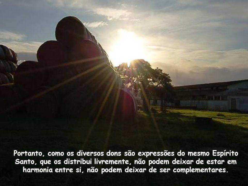 Portanto, como os diversos dons são expressões do mesmo Espírito Santo, que os distribui livremente, não podem deixar de estar em harmonia entre si, não podem deixar de ser complementares.