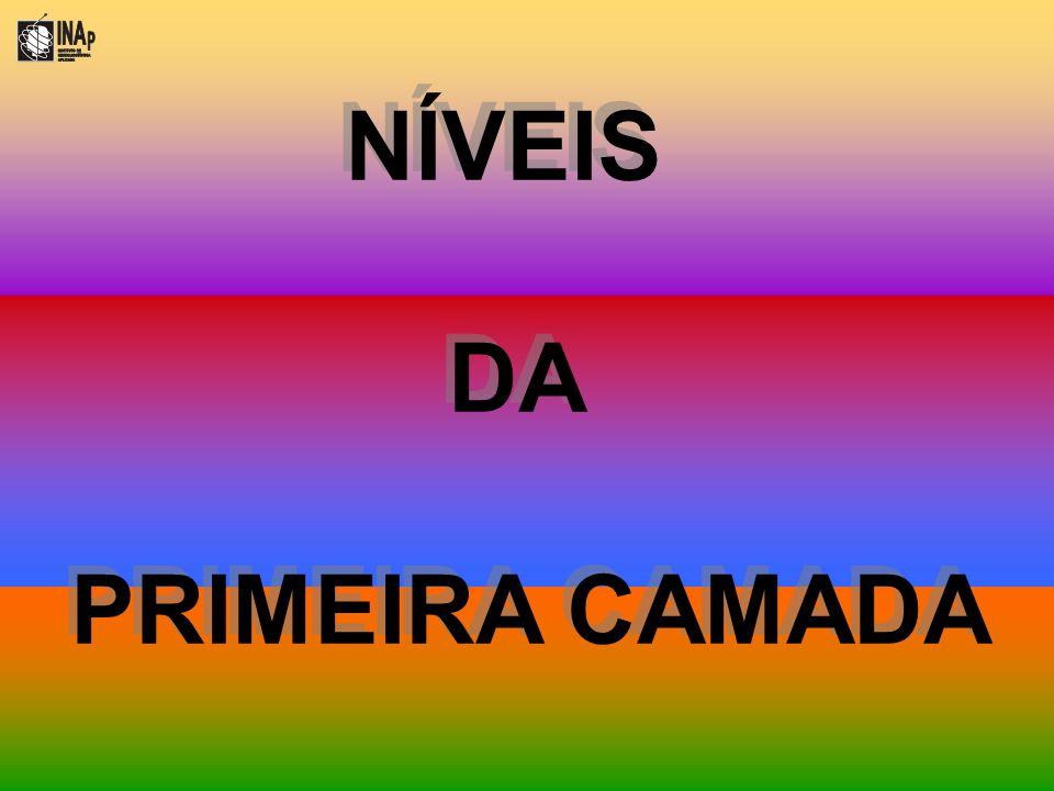 NÍVEIS DA PRIMEIRA CAMADA