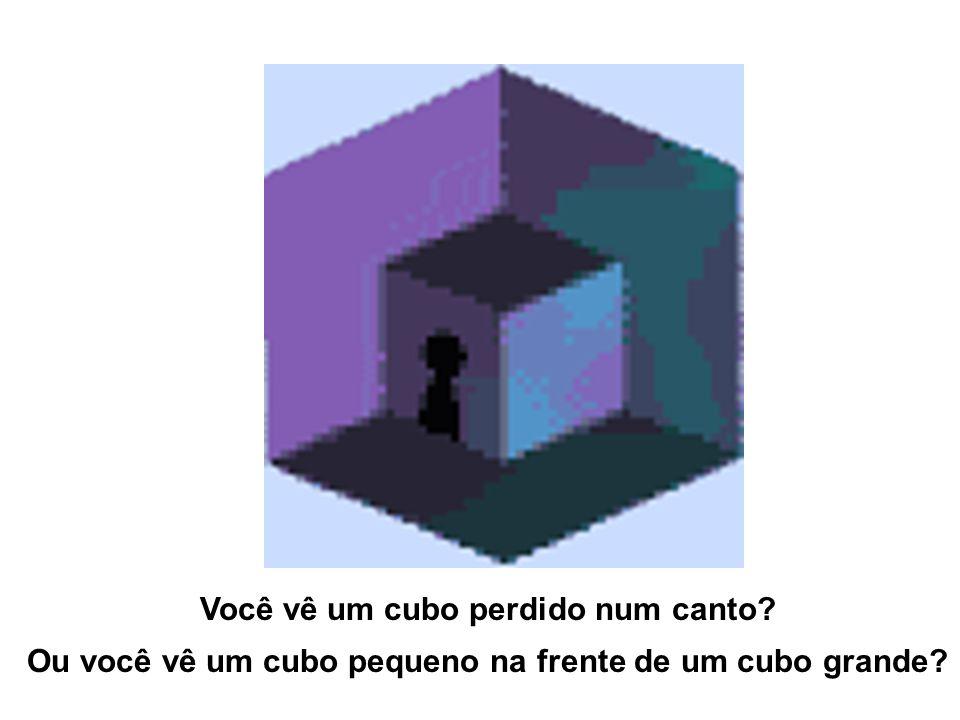Você vê um cubo perdido num canto