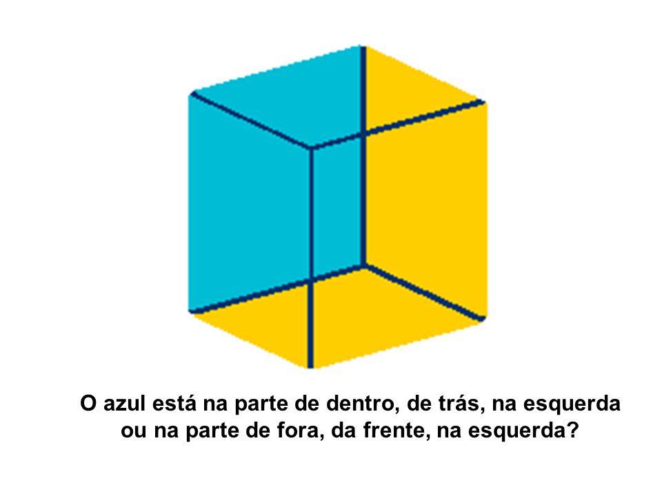 O azul está na parte de dentro, de trás, na esquerda ou na parte de fora, da frente, na esquerda
