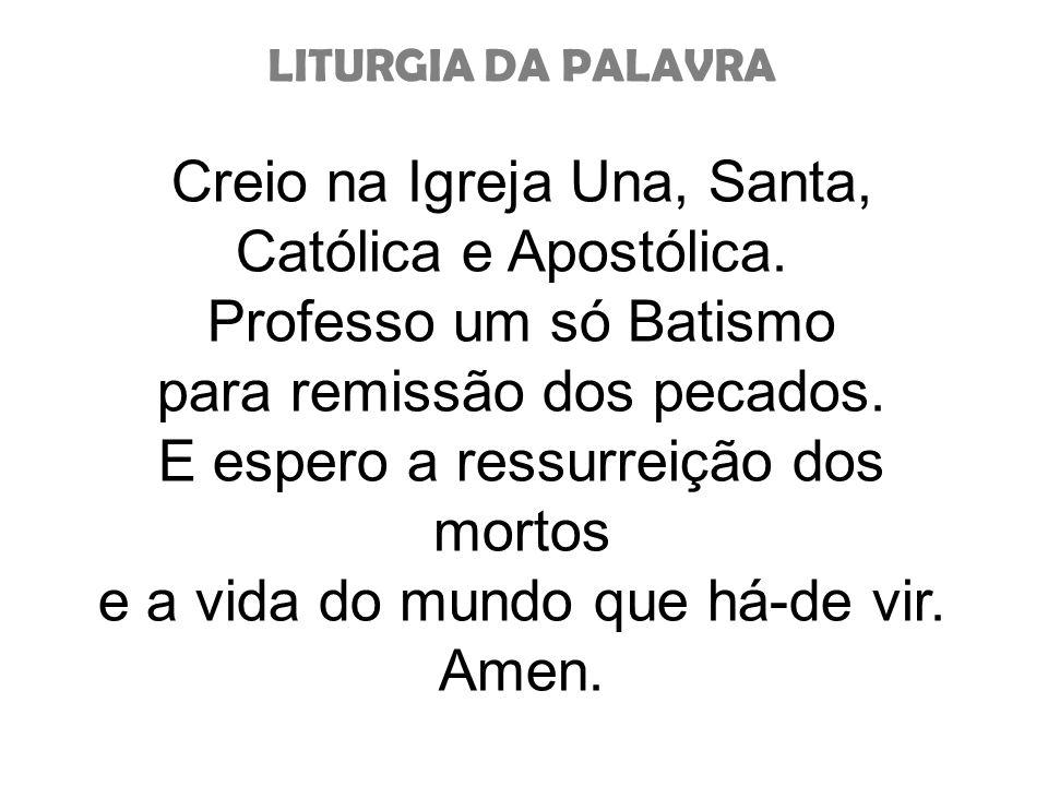 Creio na Igreja Una, Santa,