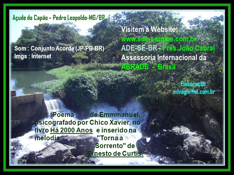 Elaboração : mlvagni@oi.com.br