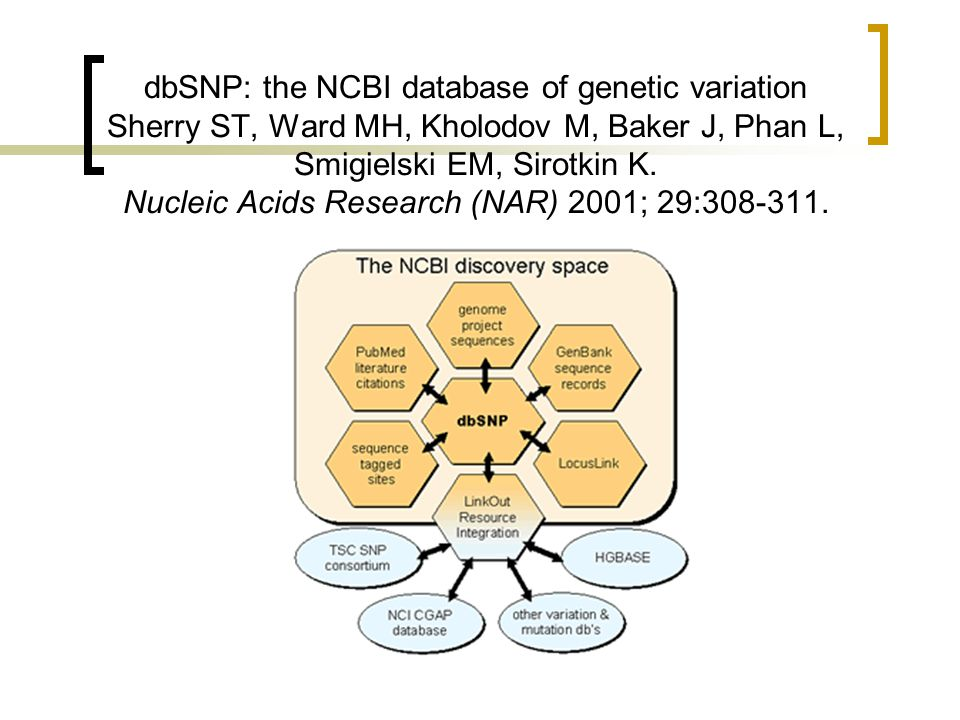 dbSNP: the NCBI database of genetic variation Sherry ST, Ward MH, Kholodov M, Baker J, Phan L, Smigielski EM, Sirotkin K.