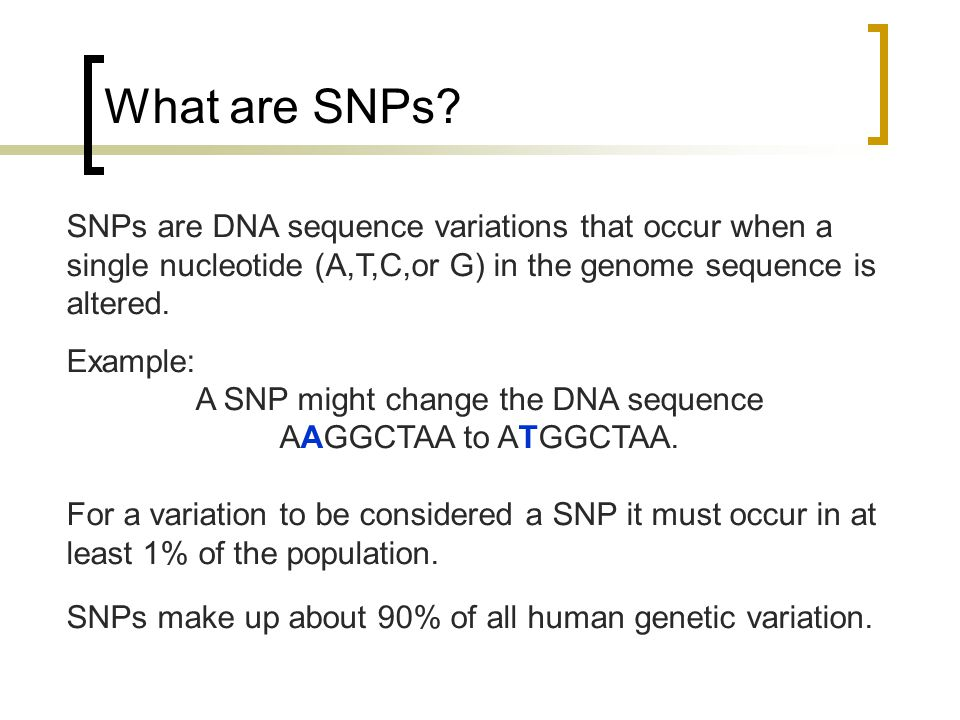 A SNP might change the DNA sequence